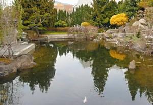 spring in kasugai garden