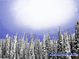Winter postcard image