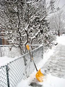 beautiful yellow shovel awaits