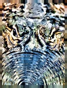 the energy of an alligator